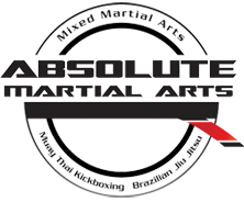 Absolute Martial Arts St Louis